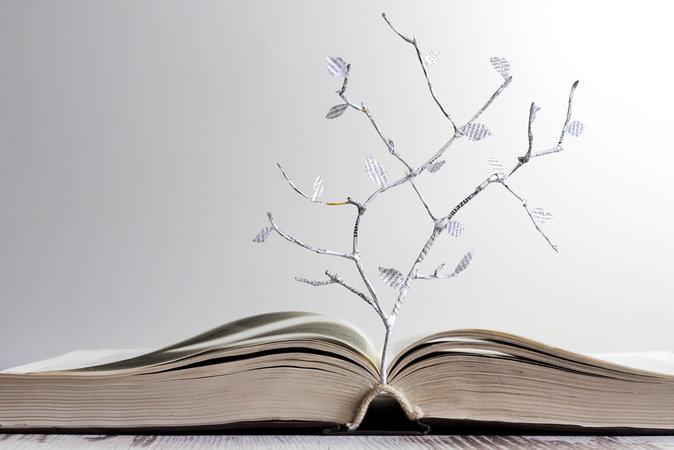 Những câu châm ngôn, câu nói hay nhất về cuộc sống, tình yêu cực ý nghĩa